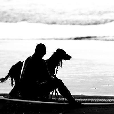 @Surfing_Dog