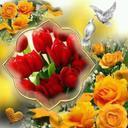 Omer4545 Omer4545 (@591dc8d5d97e413) Twitter