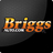 briggsauto avatar