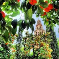 @Que ver en Córdoba