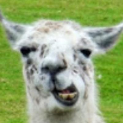Anonymous Llama Anonymousllama2