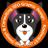 koolweb37 avatar