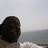 @MrDonLee Profile picture