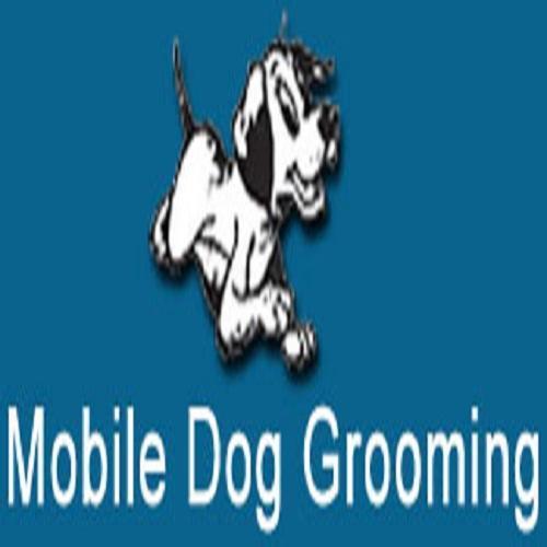 Mobile Dog Grooming Eastleigh