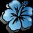 hawaii_antenna