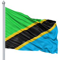 Tanzania Election  | Social Profile