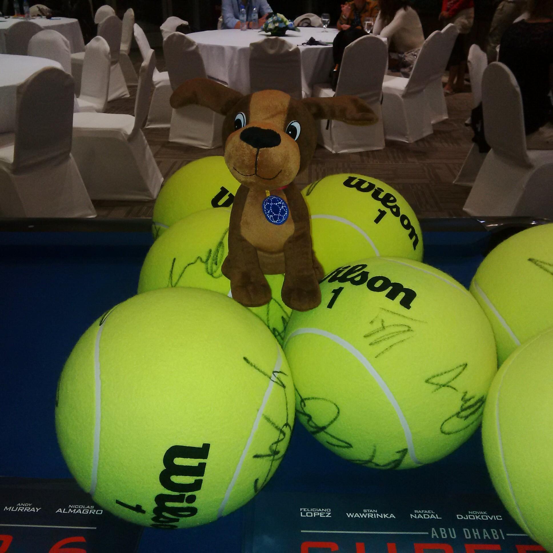 Billie the Ball Dog
