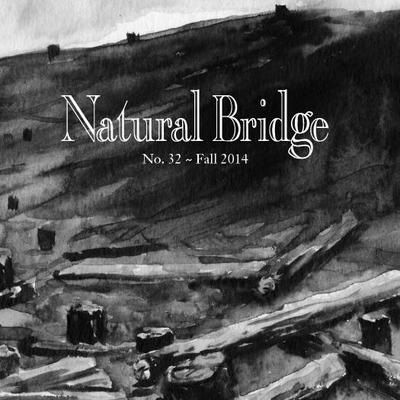 Natural Bridge Literary Journal Umsl 29