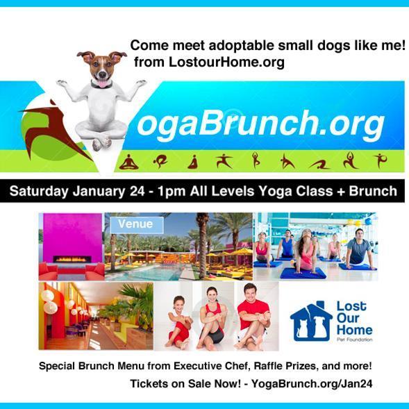 YogaBrunch.org