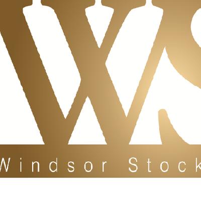 Windsor Stock Audit on Twitter: