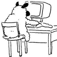 Sheep Tweets