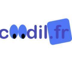cOOdil.fr
