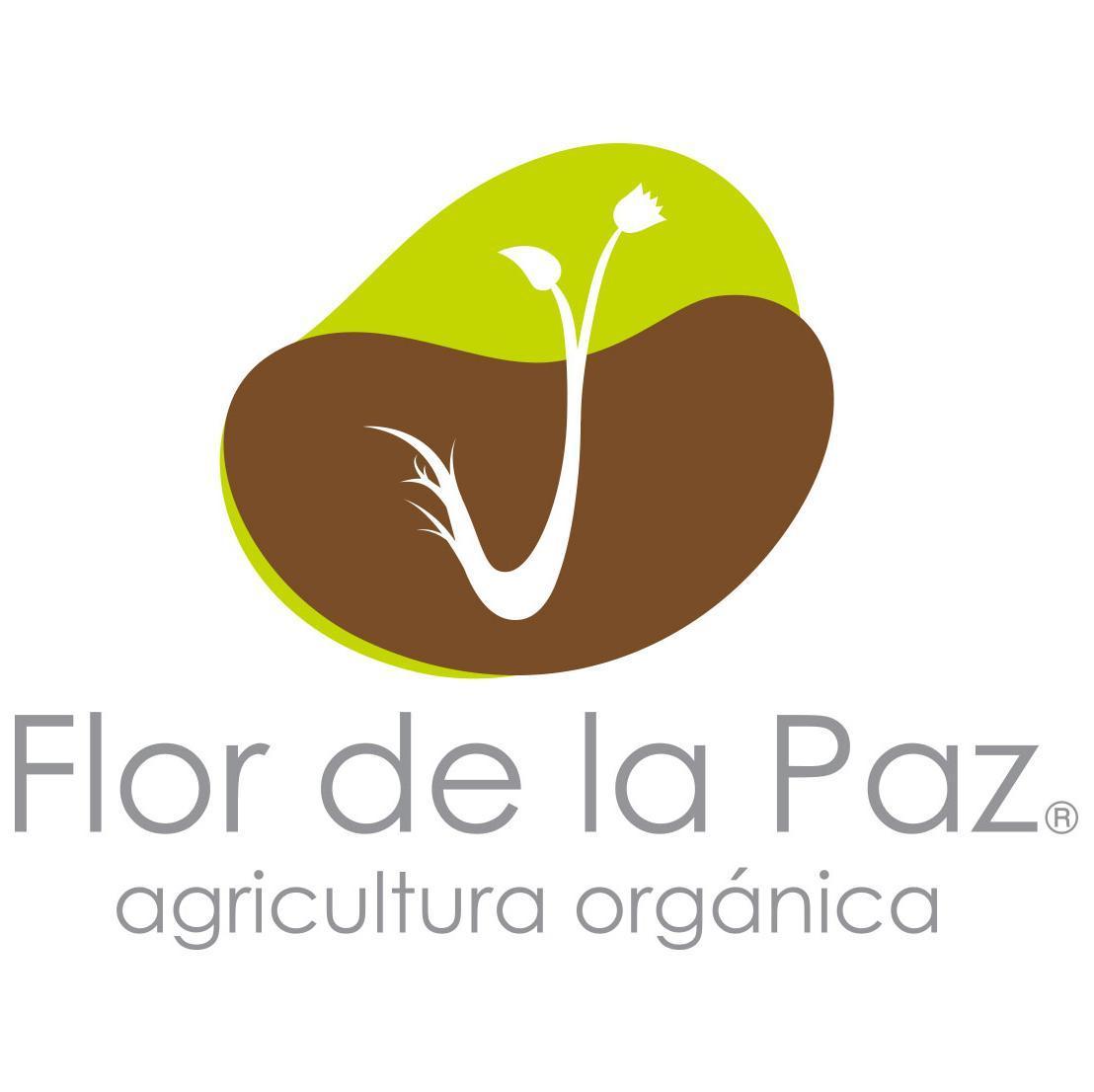 @flordelapaz_mx