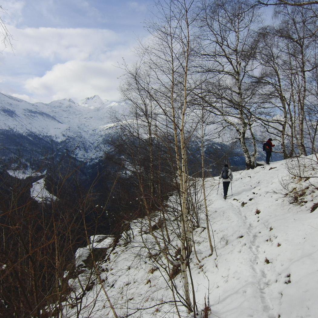 Trekking e Outdoor