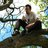Shaun_evans - shaun_evans