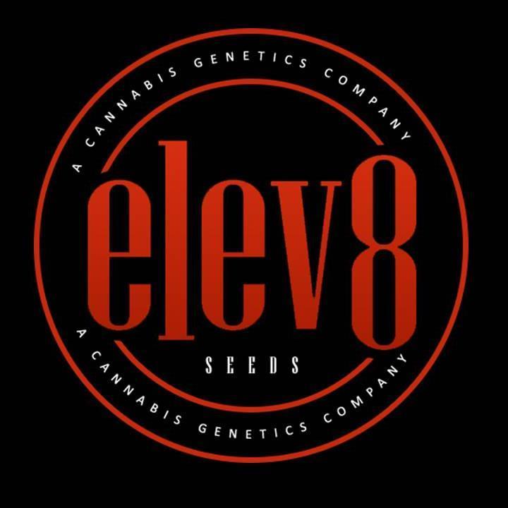 elev8 seeds elev8seeds twitter