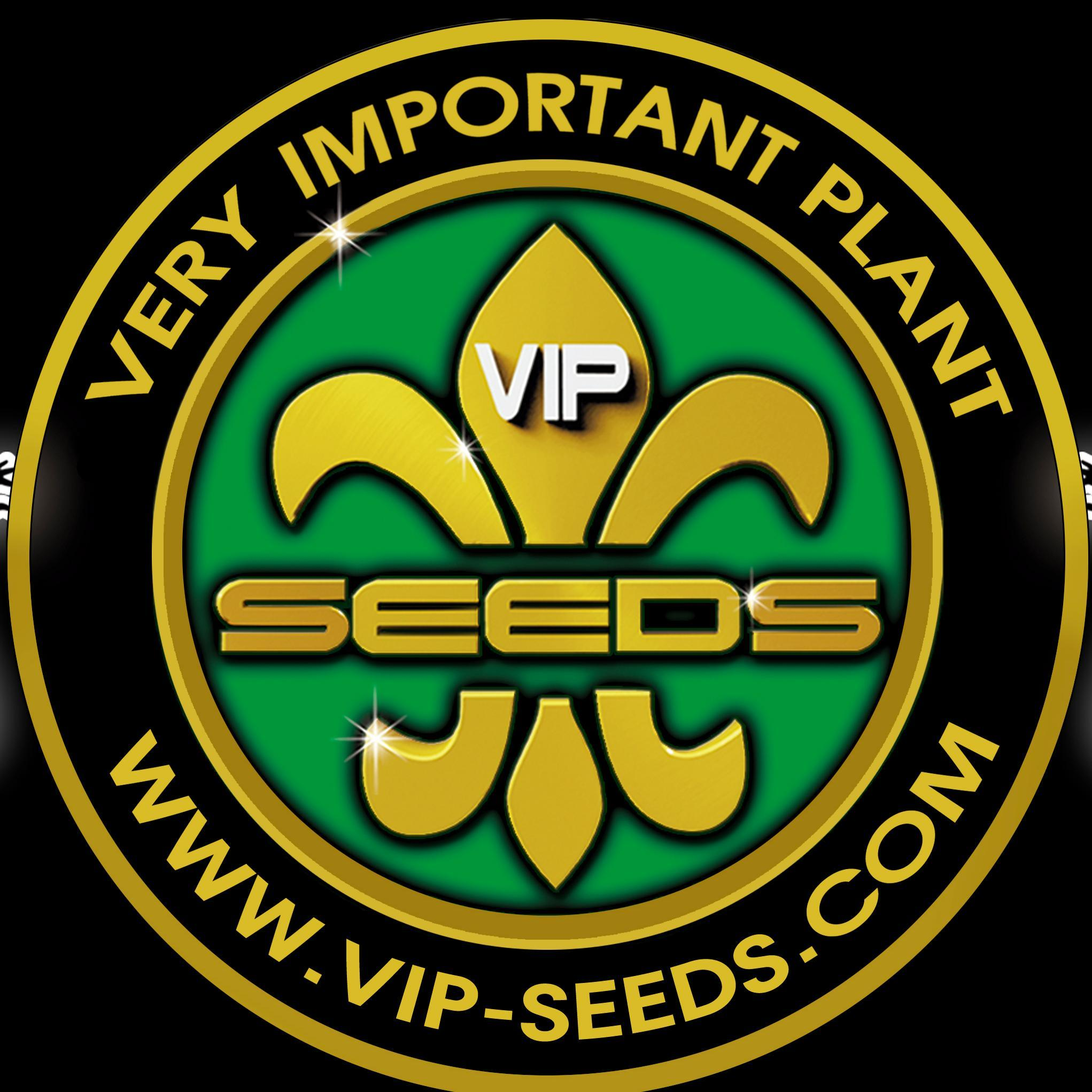 Znalezione obrazy dla zapytania vip seeds