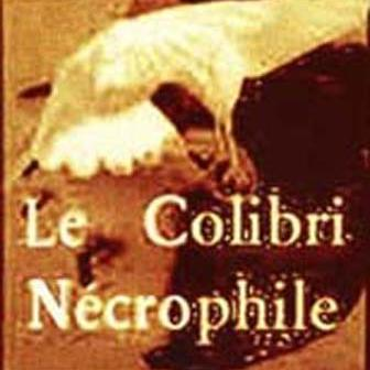 Colibri Nécrophile