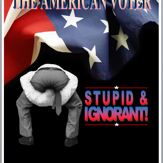 American Voter