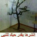 abodi alwi (@0503414913a) Twitter