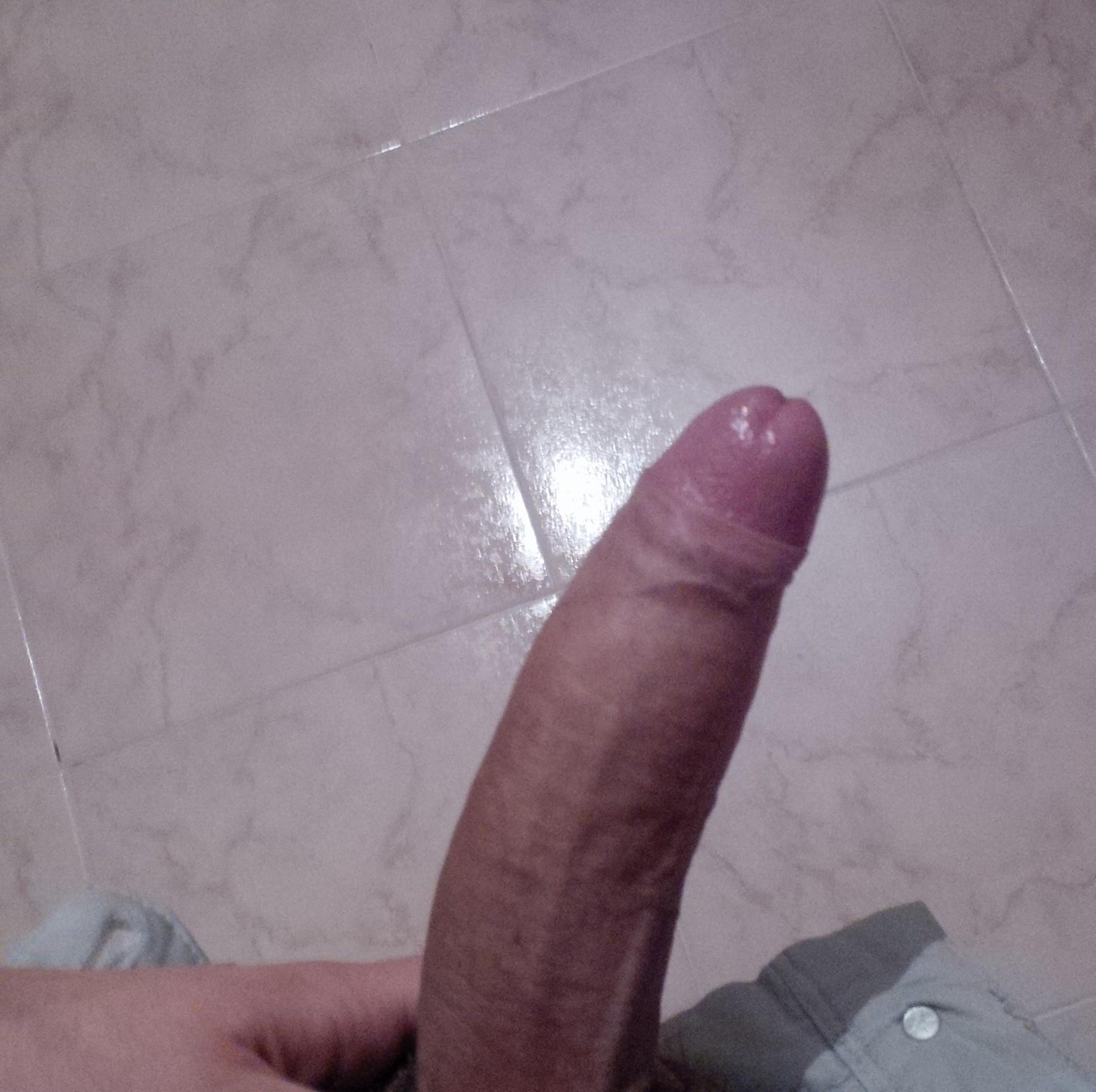 Gay Hard Cock 84