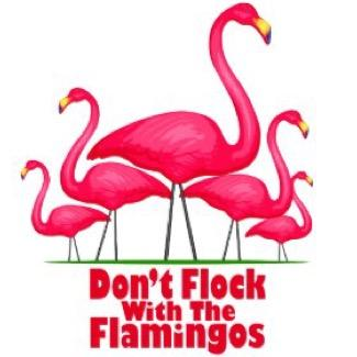 The Flamingos on Twitter: