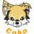 cobonas's icon