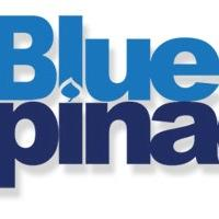 Blue Spinach (@BlueSpinachUK) Twitter profile photo