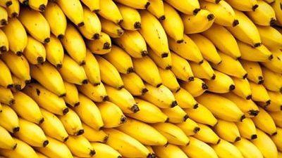 @bananistmo