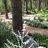 Kathy Green - gardenfornature