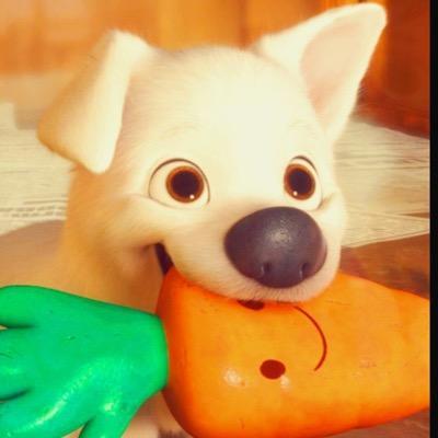 Bolt Puppy Puppy Bolt Twitter