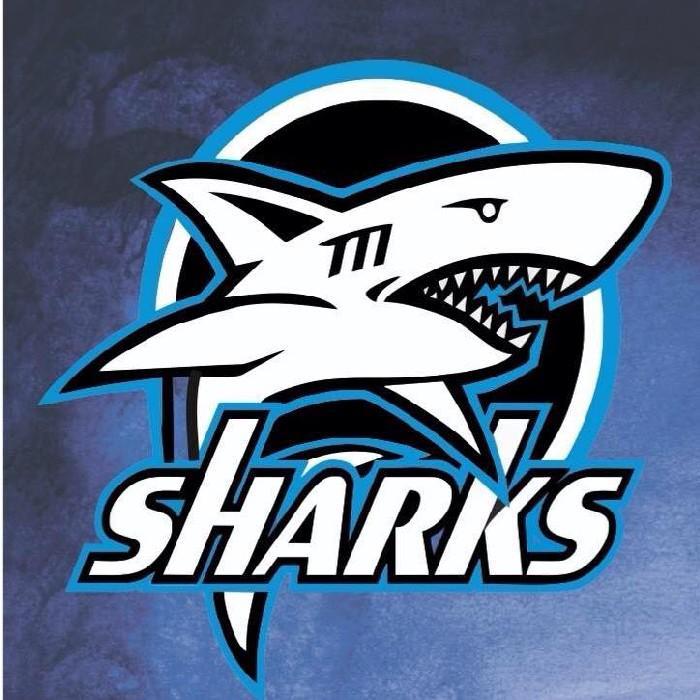 shark rugby logo wwwpixsharkcom images galleries