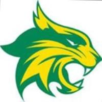 Bobcat Athletics (@BenbrookBobcats) Twitter profile photo