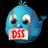 DSSHonkSoftbal