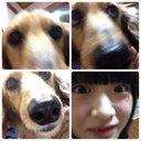 りゃんみお (@13cyanmio) Twitter