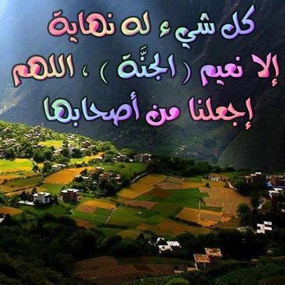 الجنه's Twitter Profile Picture