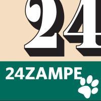 24zampe