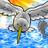 rndomhack's icon