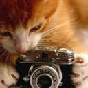 Miau!!!  (@0501XX) Twitter