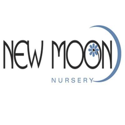 New Moon Nursery Newmoon Twitter