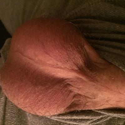 suck my balls