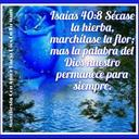 Luz Garcia (@1967Aza) Twitter