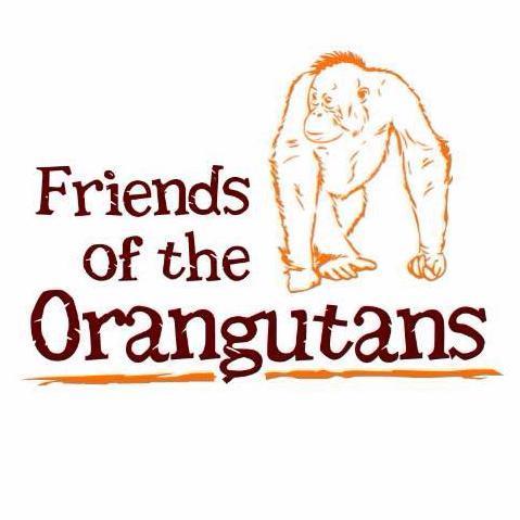 Friends of the Orangutans