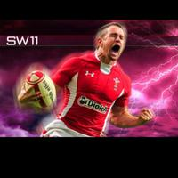 Shane Williams | Social Profile