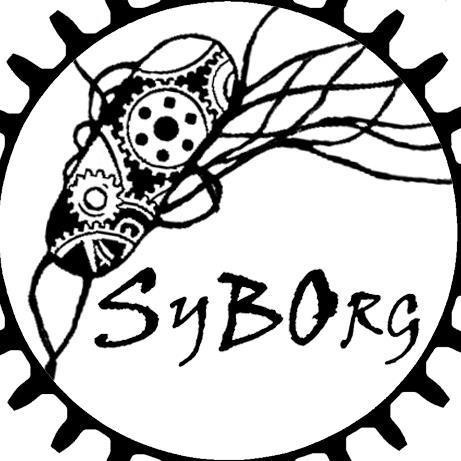 SYBORG-Project