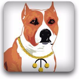 top dog pawn