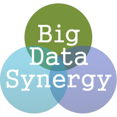 Big Data Synergy | Social Profile