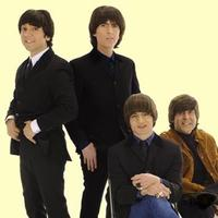 The Fab Four | Social Profile