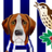 West Brom News Hound