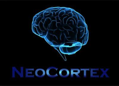 Image result for neocortex